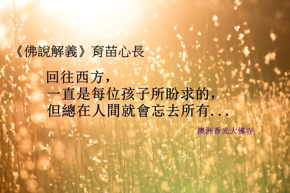 佛說解義134:育苗心長.jpg