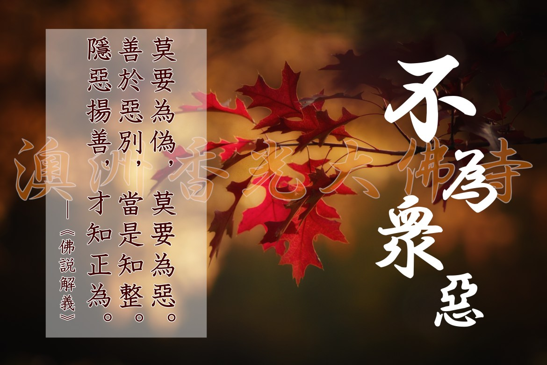 maple-leaves-2895335