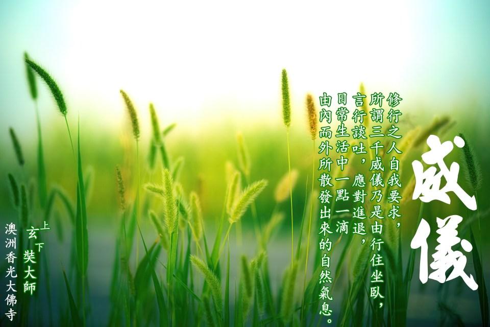 grass-3801535.jpg
