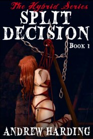 Andrew Harding - Split Decision - Book 1 Cover