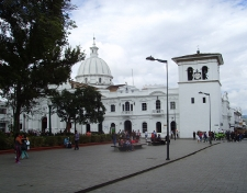 Tony Cleaver - Popayan