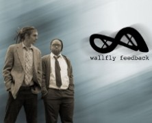 Wallfly Feedback ~ My Generation