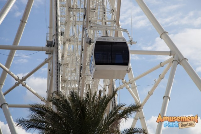 The Eye of Orlando Ferris Wheel-15