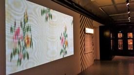 Soba s predstavljeno zbirko vzorcev, s katero odkrito odpirajo vprašanje, komu je muzej namenjen.