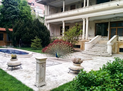 The Primaverii Palace, the home of Ceauşescu family with one of the peacocks.