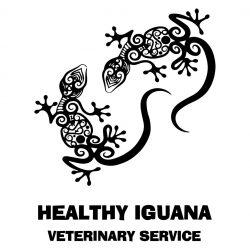 healthy-iguana-web