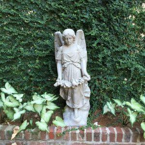 angel-pic