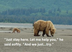 grizzly-bear-red-fox