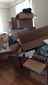 I live in a cardboard box labyrinth!