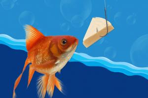 mg_goldfish_dairylea_comp