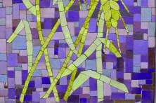 colour365-web-13102014