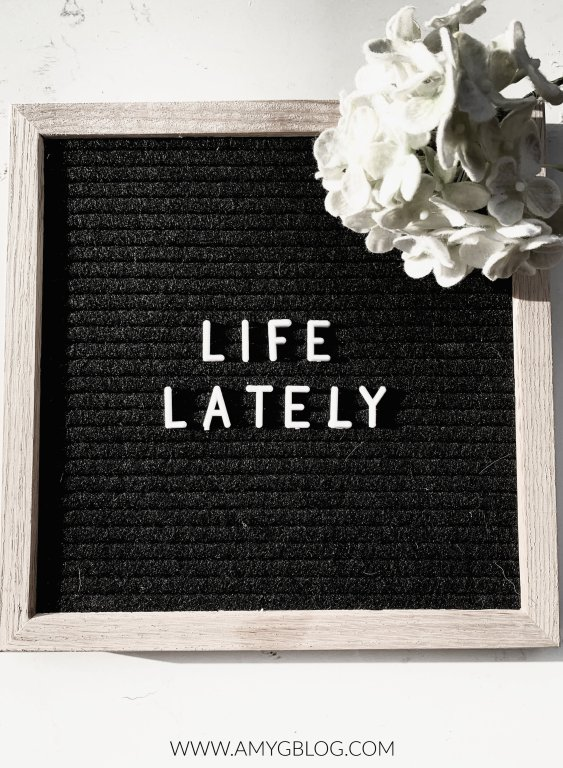 Life Lately Letterboard