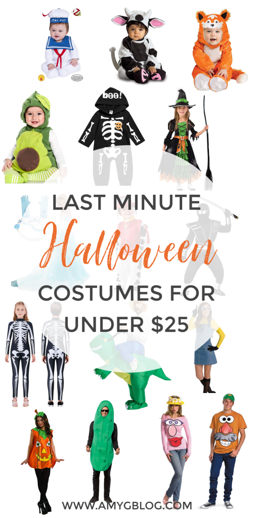 Last minute Halloween costumes for the whole family all under $25!