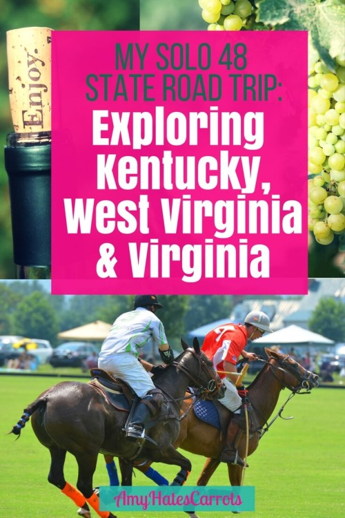 I was delighted to find that Kentucky, West Virginia AND Virginia were full of fun & lovely surprises! Here's why all 3 should be a part of your next road trip.