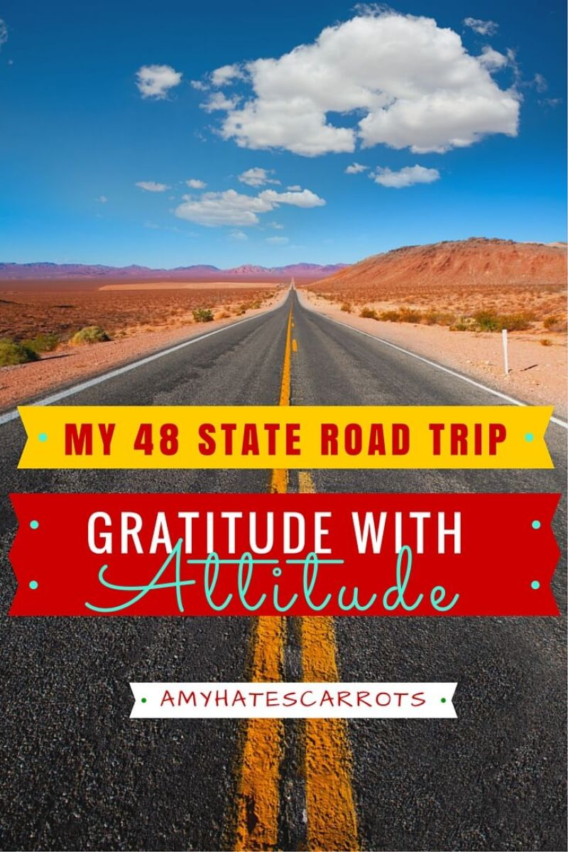 My top 5 gratitudes after returning home from a solo 48 State road trip.