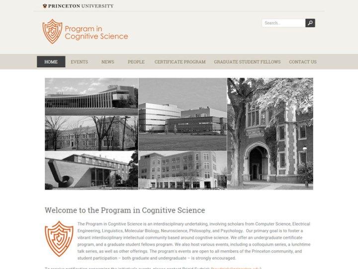 Program in Cognitive Science