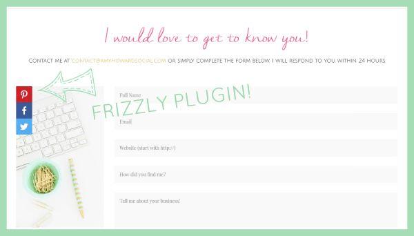Frizzly Plugin