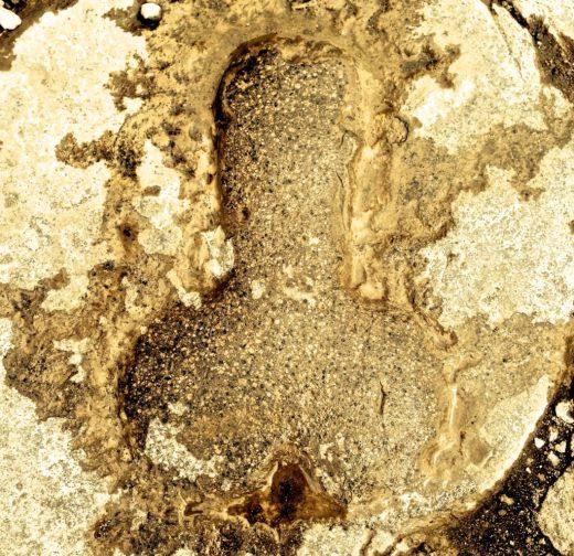 Pompeii phallus