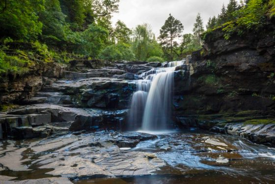 Waterfall at the Falls of Clyde. VisitScotland / Kenny Lam, all rights reserved.