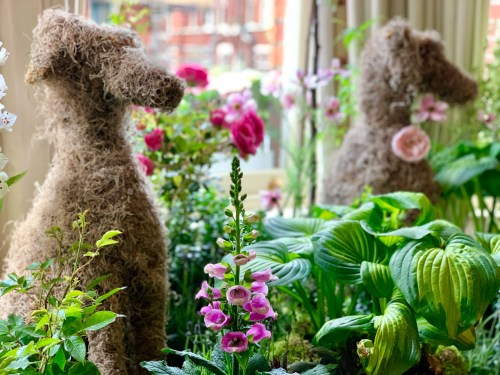topiaries of dogs in an indoor garden