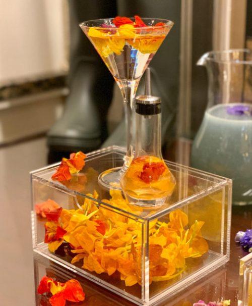 Nasturtium Martini