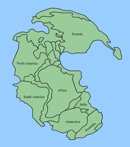 The suspected arrangement of the ancient supercontinent Pangaea. Image by Wikipedia user Kieff