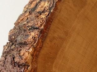 treecookiedetail05