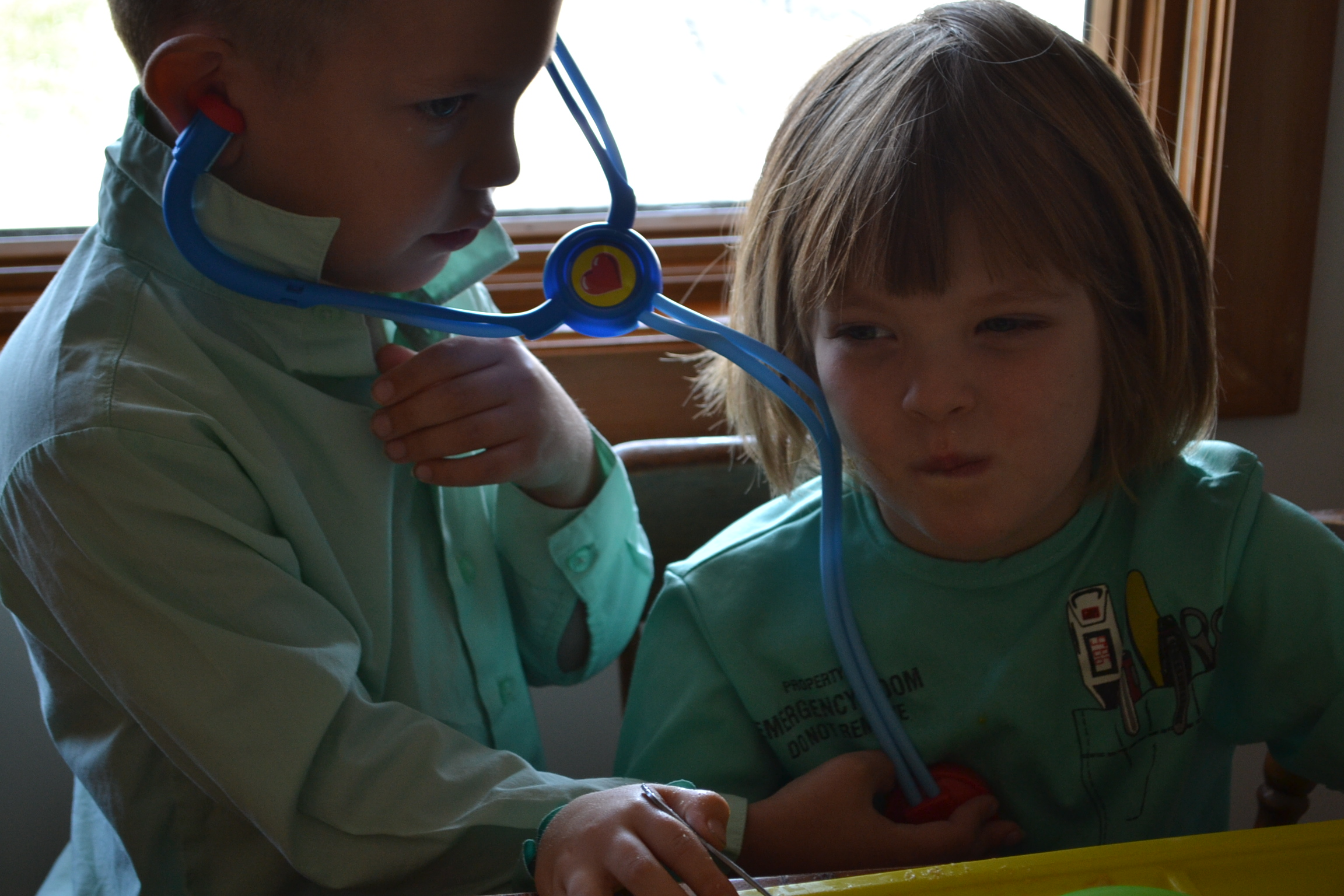 Playing Doctor Germs And Our Immune System