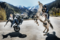epic. red bull motorcycle horse awesome