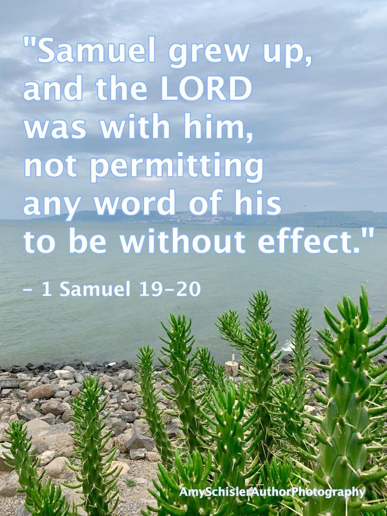 1 Samuel 3:19-20