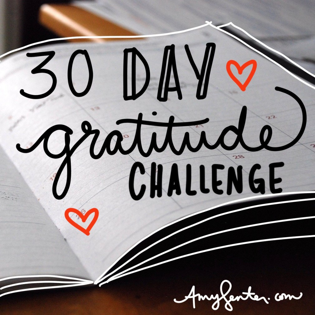 Free 30 Day Gratitude Challenge Printable