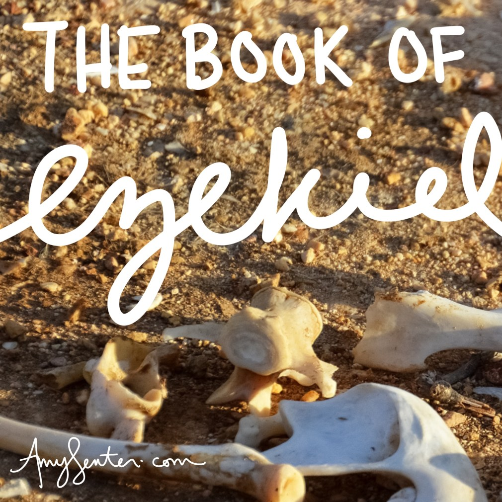 Printable Study for the Book of Ezekiel in the Bible