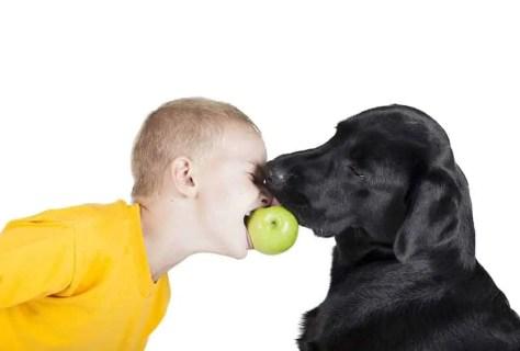 prevent dog bites with common sense