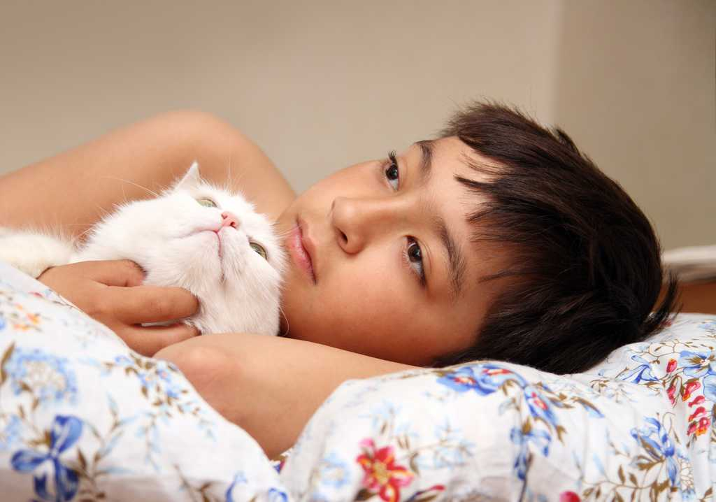 Older Pets That Have Been Around Babies, Toddlers And Young Children  Already Know How To Interact They Can Be A Wonderful Choice For A Child's  First Pet