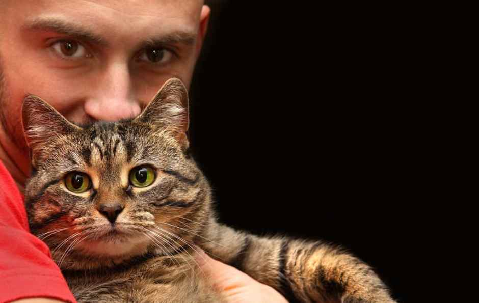 Man holding tabby cat with big green eyes