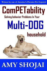 dog behavior help