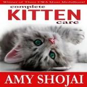 KittenAudio