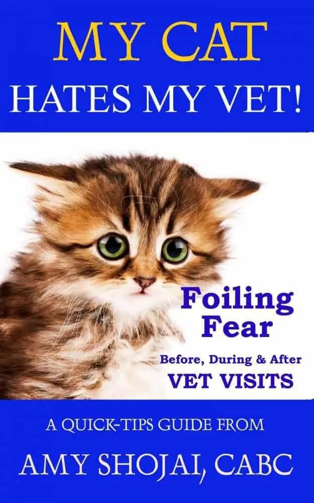 my cat hates my vet