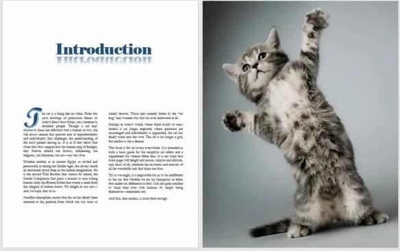 cat life hardcover