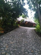 jungle-lodge-tikal