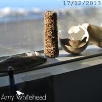 More random windowsill treasures