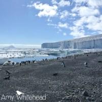 Beaufort Island & the Cape Bird icecap