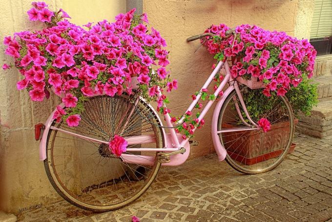 Bike repurposed as a planter to represent repurposing content.