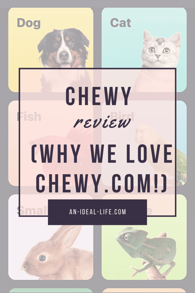 Chewy Review