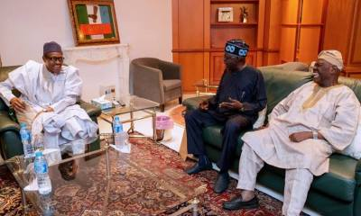 What Tinubu Said About Lagos APC Primary After Meeting Buhari