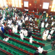 House of Representatives Orders CBN To Suspend Cashless Policy