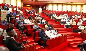 Following the recent report on police brutality the Nigerian Senate during plenary on Wednesday, passed the Police Reform Bill, 2019 (SB. 683).