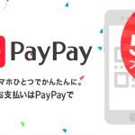 PayPayの「100億円あげちゃうキャンペーン」が強烈すぎる!還元率20%で毎月最大5万円がキャッシュバック!