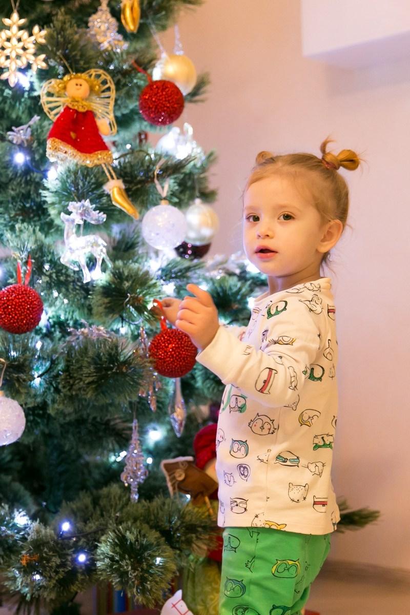 cookies-for-santa-12