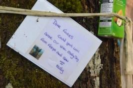 Doon Hill offerings
